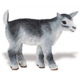 Safari Pygmy Kid Goat