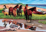 Sable Island 2000 pieces