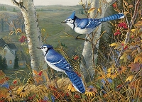 Blue Jays 1000 piece puzzle