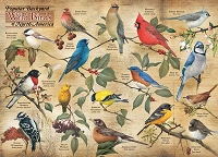 Popular Backyard Wild Birds of N.A. 1000 pieces