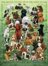 Puppy Love 350 piece Family Puzzle