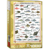 Mediterranean Fish 1000 Pieces