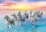 white Horses In Gallop 500 piece puzzle