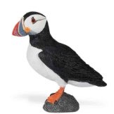 Safari Atlantic Puffin