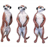 Safari Meerkats Set of 3