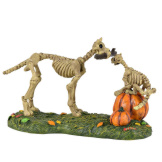 Haunted Pets At Play