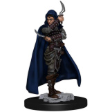 PF Battles Pre Painted Human Rogue Female