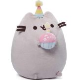 Pusheen Birthday 10.5