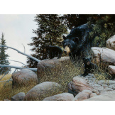 Black Bear Family 500 piece puzzle