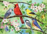 Bloomin' Birds 350 piece family puzzle
