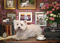 Westies Are My Type 1000 piece puzzle