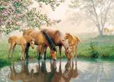 Horse Family 350 piece Family Puzzle