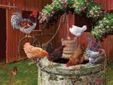 The Chickens are Well 275 piece puzzle