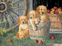 Puppy Pail 350 Piece Family Puzzle