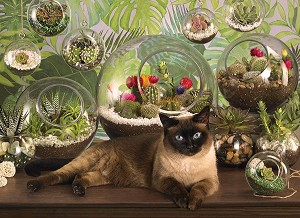 Terrarium Cat 1000 Pieces