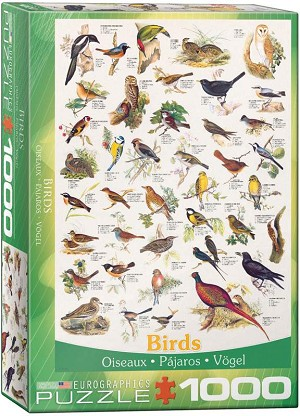 Birds Of Field & Garden